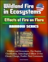 Wildland Fire In Ecosystems Effects Of Fire On Flora Rainbow Series - Wildfires And Ecosystems Fire Regime Classification Autecological Effects Of Fire Climate Change Postfire Plant Community