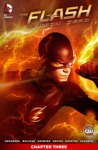 The Flash Season Zero 2014- 3