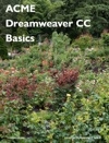 ACME Dreamweaver CC Basics