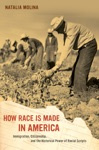 How Race Is Made In America