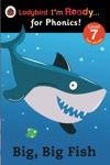 Big Big Fish Ladybird Im Ready For Phonics Level 7 Enhanced Edition