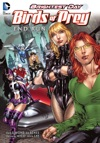 Birds Of Prey Vol 1 Endrun