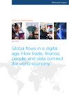 Global Flows In A Digital Age How Trade Finance People And Data Connect The World Economy