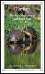 Turtles Shelled Creatures Of Land And Sea