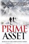 Prime Asset The Complete Novel