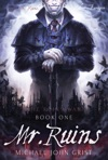 Mr Ruins A Science Fiction Thriller