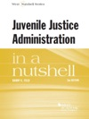 Juvenile Justice Administration In A Nutshell 3d