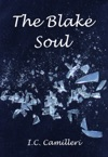 The Blake Soul A Supernatural Thriller And Romance