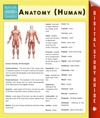 Anatomy Human Speedy Study Guides