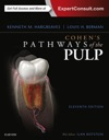 Cohens Pathways Of The Pulp Expert Consult - E-Book