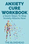 Anxiety Cure Workbook 3 Quick Steps To Stop Anxiety Attacks Now