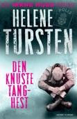 Helene Tursten - Den knuste Tang-hest artwork
