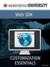 Customization Essentials For MicroStrategy Web SDK