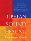 Tibetan Sound Healing Enhanced Edition