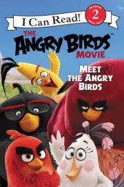 THE ANGRY BIRDS MOVIE: MEET THE ANGRY BIRDS