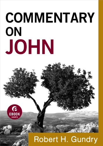 Commentary on John Commentary on the New Testament Book 4
