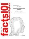 Endocrine Pathophysiology