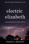 Electric Elizabeth A Novel