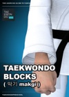 Blocks   Makgi   Taekwondo Preschool