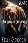 Slate Breaking The Declan Brothers 2