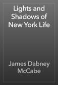 James Dabney McCabe - Lights and Shadows of New York Life artwork