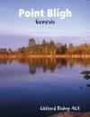 Point Bligh