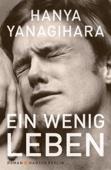 Hanya Yanagihara - Ein wenig Leben Grafik