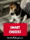 MOOKIETHEBEAGLECOM SMART CHOICES