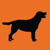 Cachorros y Entrenamiento de Perros