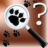 Animal Tracks Quiz