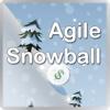 Agile Snowball: Debt Simplified