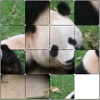 Custom Tile Puzzles