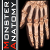 Monster Anatomy - Upper Limb