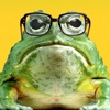 FrogLeaps