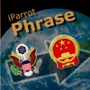 iParrot Phrase English-Chinese