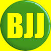 BJJ Board
