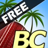 Beach Cricket Free