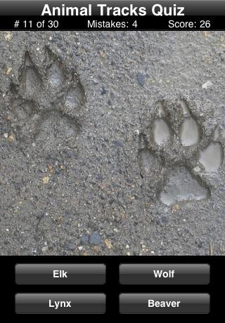 Animal Tracks Quiz screenshot1