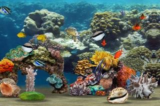 MyReef 3D Aquarium Screenshot 5