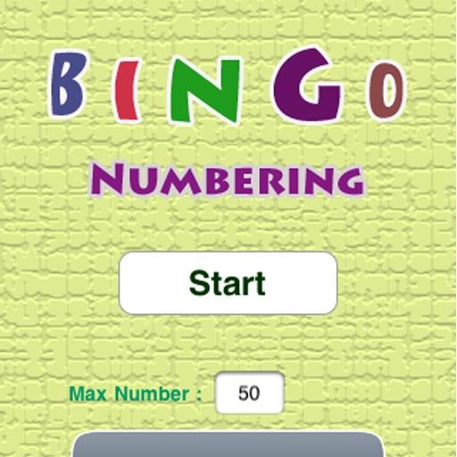 Bingo Numbering