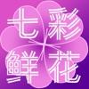 七彩鲜花HD版