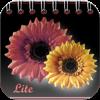 Kalendarz Imienin Lite