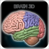 Brain 3D for iPhone