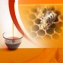 Beekeeping - Learn How To Keep Bees Successfully! icon