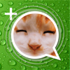 Stickers+ Fun Emotion Gif Photo for Messenger