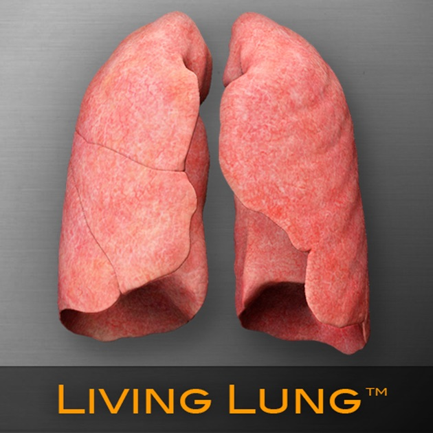Living Lung™ - Lung Viewer on the App Store