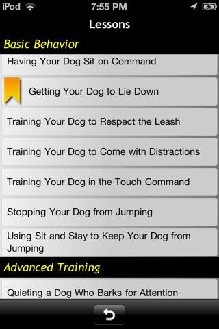 basic training for dummies pdf