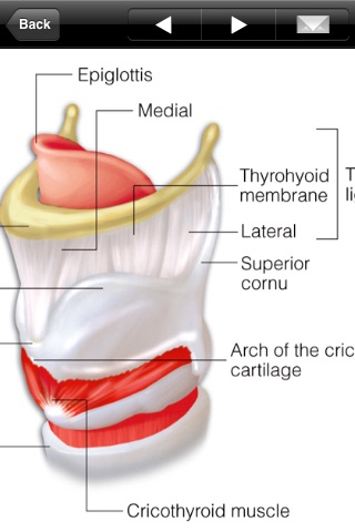 Miniatlas Anatomy Screenshot 4