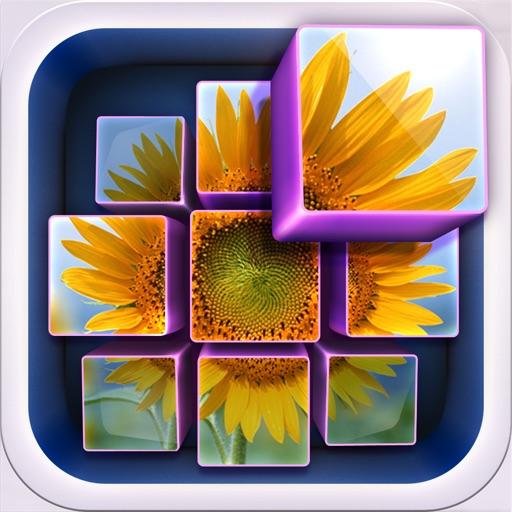 InstaMosaic - Photo Mosaic Generator iOS App