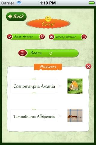 Insects Catalog Screenshot